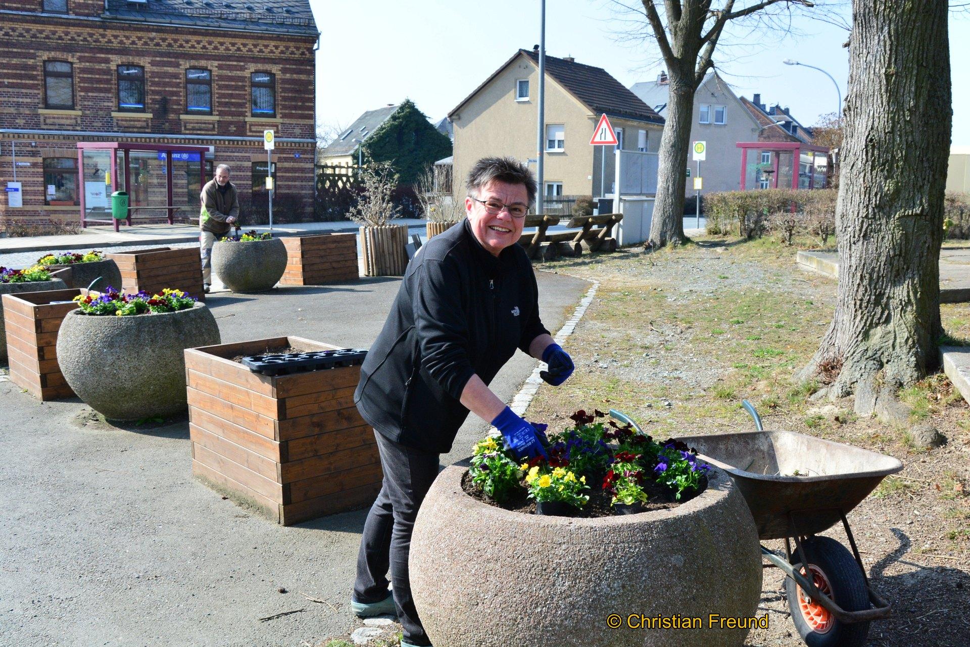 Eine große Anzahl bunte Stiefmütterchen pflanzten Silvia und Stephan Wolf in die Kübel vor dem Denkmal in Greiz- Obergrochlitz und sorgten damit für einen schönen Blickfang.
